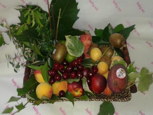fruta-y-plantas